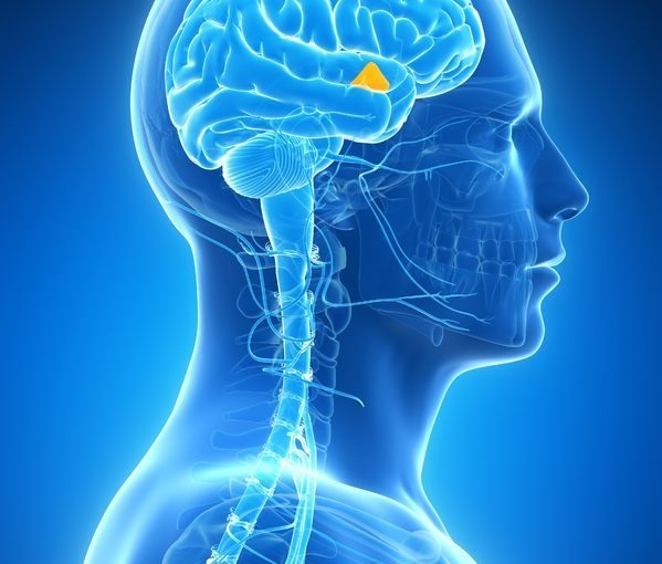 Using Neuroscience to Overcome Sales Call Reluctance